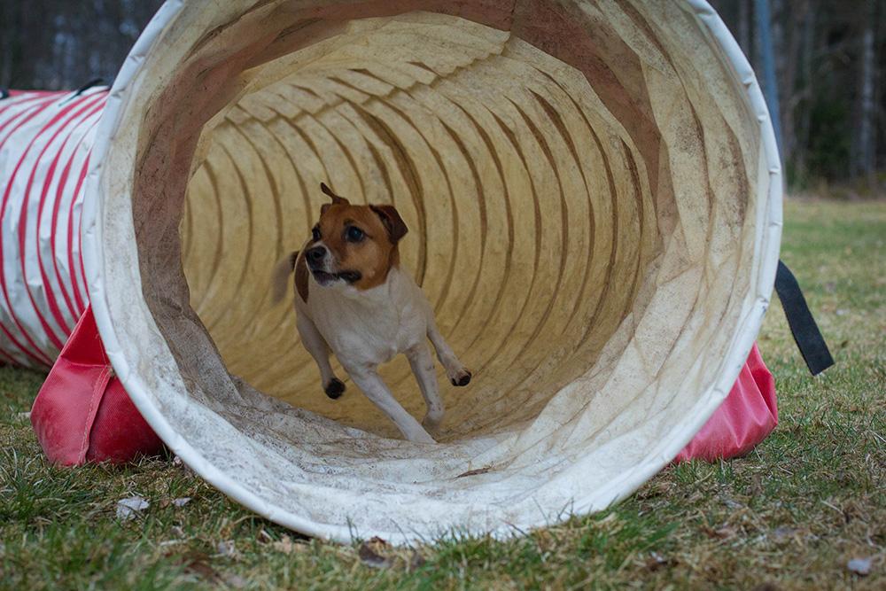 Aska springer genom tunneln