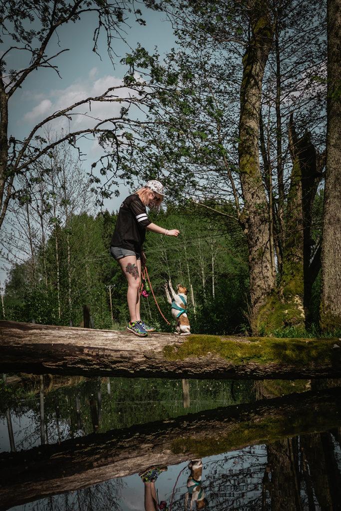 Foto: Niclas Stjernstedt